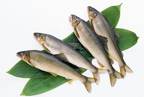 新鲜水产品营养价值高 怎样挑选?