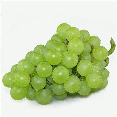 延庆京蜜 玉葡萄 3斤 现摘现发 有机葡萄